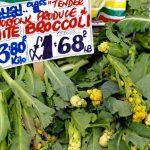 Norwich Vegtables